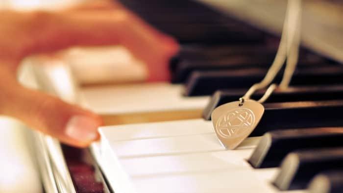 Alat Musik Melodis di Petik