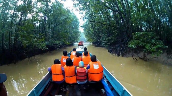 Hutan Mangrov