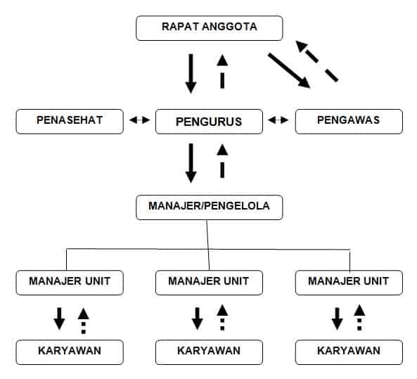 gambar struktur organisasi koperasi