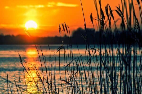 gambar pemandangan danau di sore hari