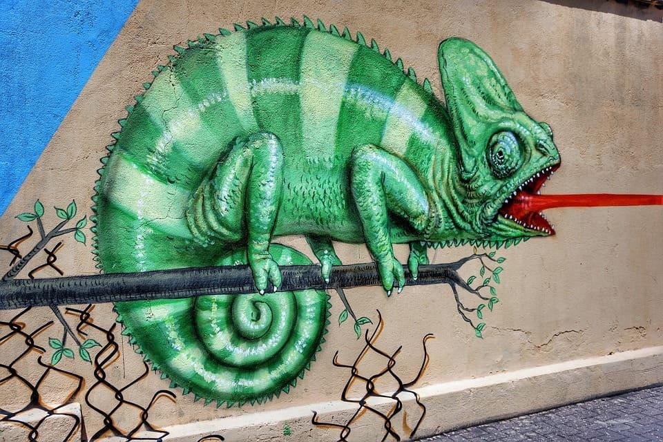 grafiti bunglon
