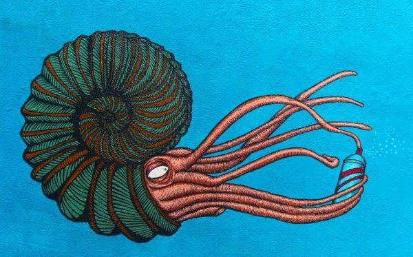 grafiti gurita