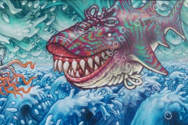 grafiti hiu