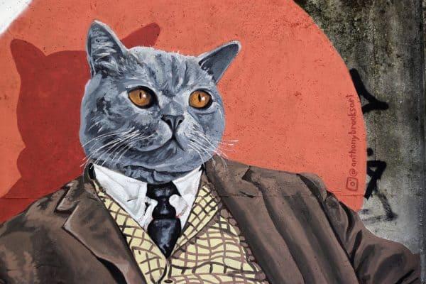 grafiti kucing berjas